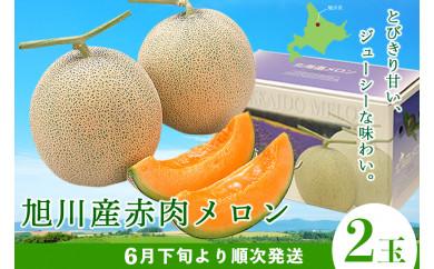 【先行予約】旭川産赤肉メロン 2玉(6月下旬より順次発送)