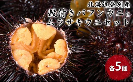 [№5793-0905]北海道登別産 殻付きバフンウニとムラサキウニセット各5個 ※7月お届け・納期指定不可※