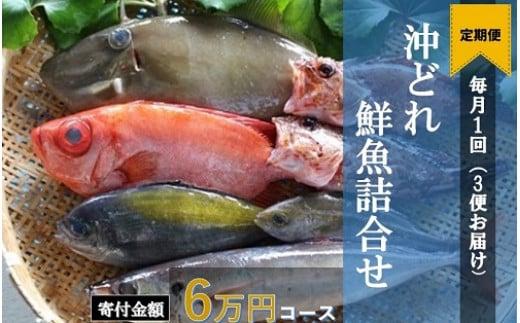 【I-3】土佐清水の鮮魚詰め合わせ定期便【3回】(寄附金60,000円コース)