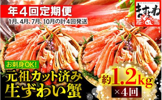 [001-h001]定期便 【年4回お届け】越前かに問屋 ますよね 大人気商品 元祖カット済 生ずわい蟹【約1.2kg】