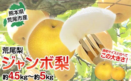 荒尾梨 ジャンボ 梨 フレッシュフーズ 約4.5kg~5kg (5-6玉)《9月中旬-11月上旬頃より順次出荷》なし フルーツ 果物 新鮮
