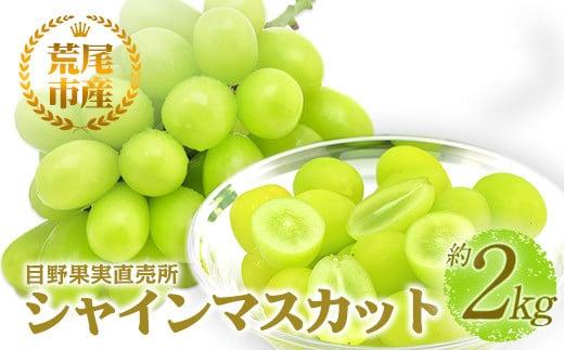 荒尾市 目野果実直売所のシャインマスカット 約2kg フルーツ 果物 新鮮 《8月中旬-9月下旬頃より順次出荷》