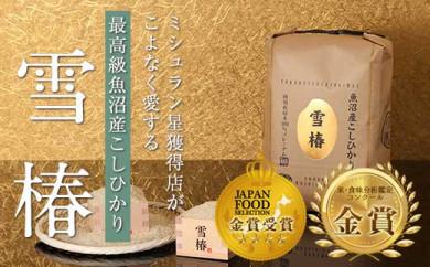 【頒布会】最高級魚沼産コシヒカリ「雪椿」5kg×全6回 特別栽培米