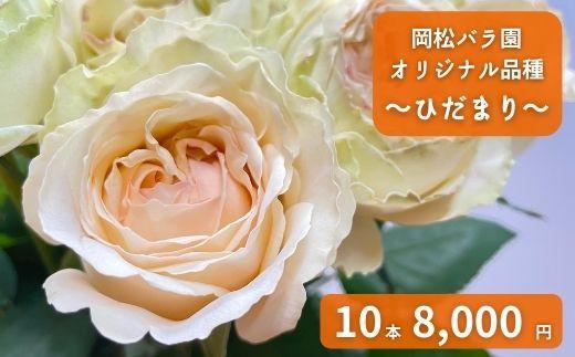 OKM24 岡松バラ園オリジナル品種バラ「ひだまり」10本(約0.2kg)