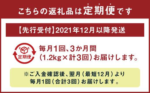 【先行受付】【2021年12月以降発送】 野菜 ソムリエ岡田健志郎が育てた ミニトマト 1.2kg 3回発送 定期便