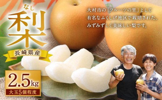 梨 2.5kg (大玉 5個 程度) 豊水 あきづき【40pt】