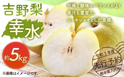 八代市 令和3年度 先行予約 吉野梨 幸水 5kg 梨 果物 幸水梨