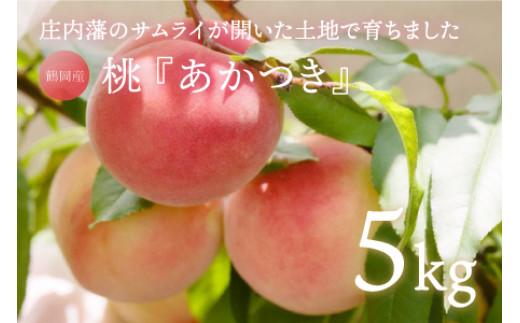 A51-442 鶴岡市産 桃(あかつき)5㎏