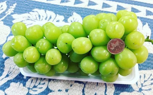 【先行予約】【8月中旬頃発送予定】 シャインマスカット と ピオーネ セット 合計約1.8kg 果物 フルーツ