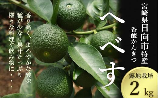 【期間限定】黒木へべすファーム自慢の果汁たっぷり《露地》へべす 2kg [10-91]