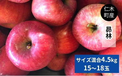 [№5613-0558]仁木町の採れたてりんご「昴林(こうりん)」4.5kg≪妹尾観光農園≫