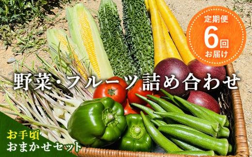 【定期便】6回お届け 野菜・フルーツ詰め合わせ<お手頃おまかせセット>
