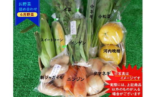 【6月野菜】写真は一例です!実際には上記商品以外のものが入る場合がございます。