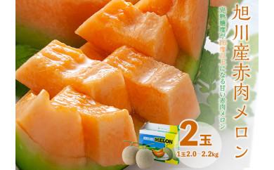 【先行予約】旭川産 赤肉メロン 2玉(1玉2.0~2.2kg)7月中旬~発送開始予定