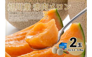 【先行予約】旭川産 赤肉メロン 2玉(1玉1.1~1.4kg)7月中旬~発送開始予定