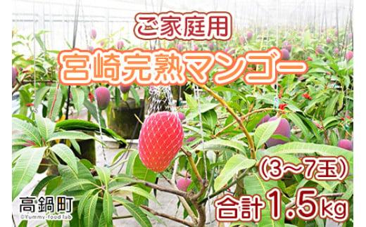 <宮崎県産完熟マンゴー 1.5kg ご家庭用(3~7玉)>2021年7月初旬~9月中旬頃迄に順次出荷