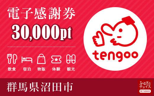 沼田市電子感謝券 30,000pt(1pt=1円)