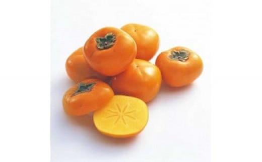 ZB6018_和歌山県産とろ~っと甘い平核無柿約10kg(5kg×2箱)