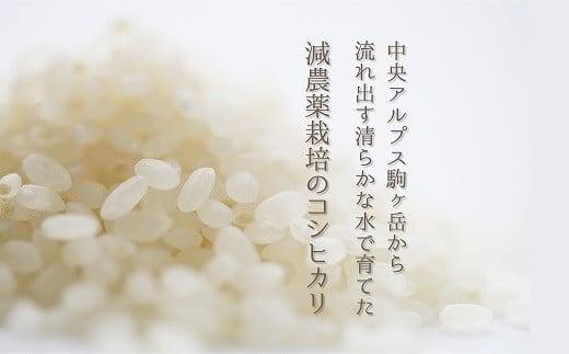 【令和3年産予約受付】減農薬栽培コシヒカリ10kg・30kg