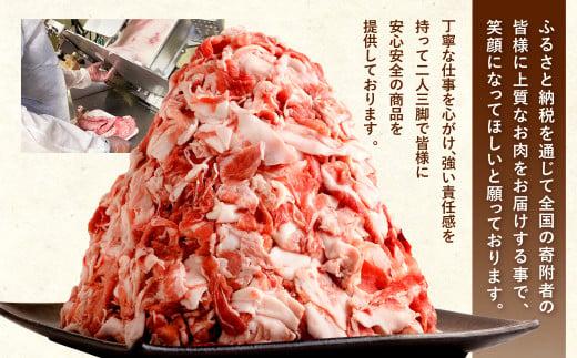 【3月発送】【訳あり】九州産 豚切り落とし 7袋 合計3.8kg 小分け 豚肉