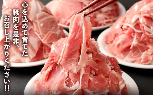 【7月発送】【訳あり】九州産 豚切り落とし 7袋 合計3.8kg 小分け 豚肉