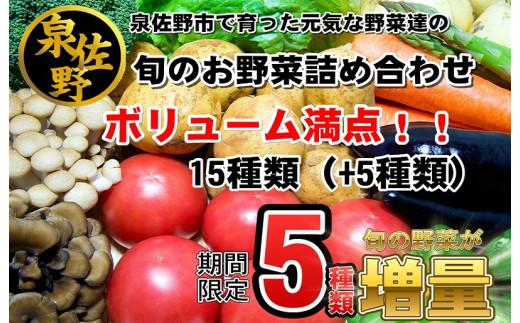 010B543 【期間限定】旬のお野菜詰め合わせ 15種類(+5種類)