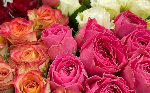OKM20 【定期便全12回】日本一に輝いた阿波のバラをお届け! ローズガーデン徳島 阿波バラ20本×全12回