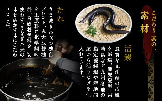【丑の日配達指定】九州産 うなぎ 蒲焼 大 4尾 計640g以上(1尾あたり156~189g)