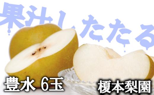 果汁したたる榎本梨園自慢の完熟梨 豊水6玉(3L~4L) 【11246-0062】