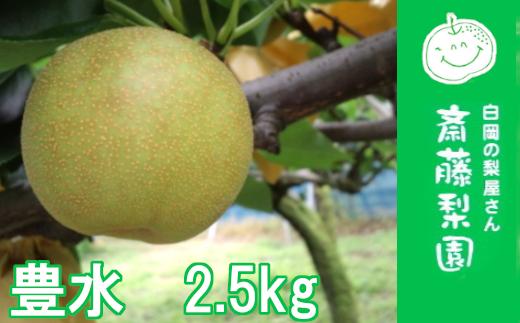白岡・下野田 斉藤さんちの美味しい梨 豊水2.5kg 【11246-0146】