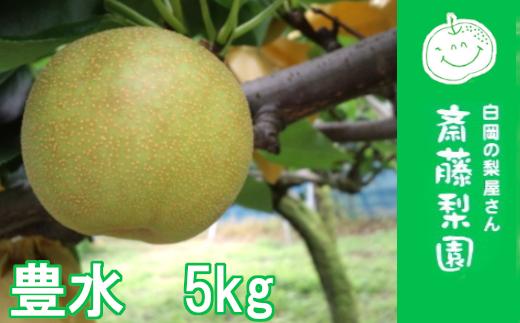 白岡・下野田 斉藤さんちの美味しい梨 豊水5kg 【11246-0145】