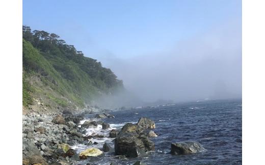 雨雲や霧ではない「やませ」が海から来る様子