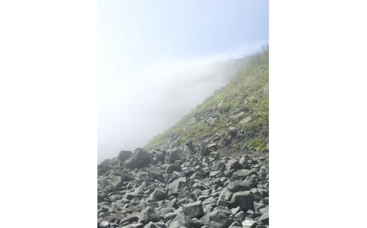山を登るやませ②