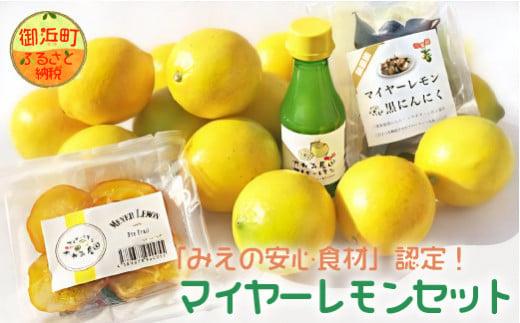 AA015-Gたかみ農園マイヤーレモンセット