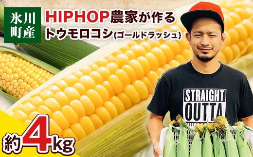 HIPHOP農家が作るトウモロコシ(ゴールドラッシュ)約4kg 《6月上旬-7月中旬頃より順次出荷》 熊本県氷川町産 中村農園 スイートコーン