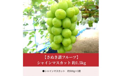 【さぬき讃フルーツ】シャインマスカット 約1.5kg