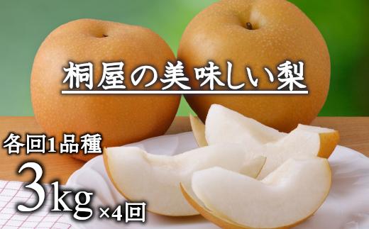 【3kg×4回定期便】桐屋(やぎさわ梨園)の美味しい梨(幸水・豊水・あきづき・王秋) 【11246-0066】