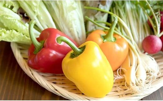 TKB5-C025 【野菜ソムリエKANEOKAセレクト】旬の野菜フルーツ+森のアスパラセット(5〜6人前)