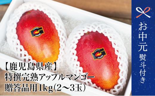 【お中元ギフト】【鹿児島県産】特撰完熟アップルマンゴー 贈答品用 1kg(2~3玉)