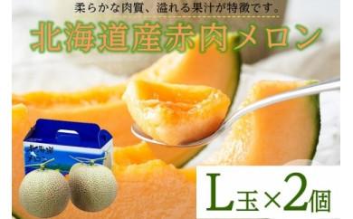 【先行予約】待つほどおいしい!北海道「赤肉メロン」L玉×2個(2021年7月~発送予定)