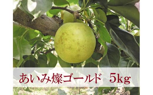 【21-012-030】鳥取県産梨「あいみ燦ゴールド」(5kg)