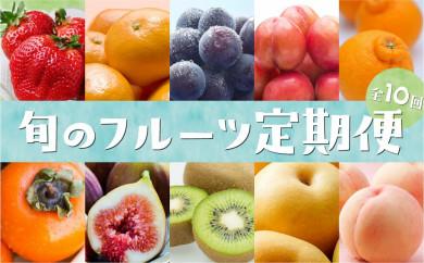 九州・福岡フルーツ王国八女 旬のフルーツ定期便【全10回】 A 【2021年9月以降発送予定】
