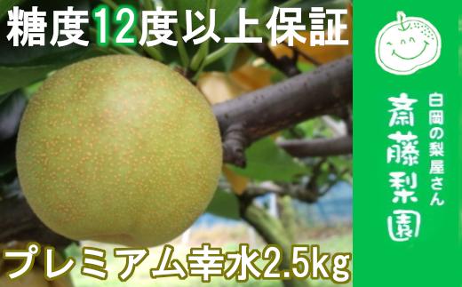 【糖度12度以上保証】白岡・下野田 斉藤さんちのプレミアム幸水 2.5kg 【11246-0075】