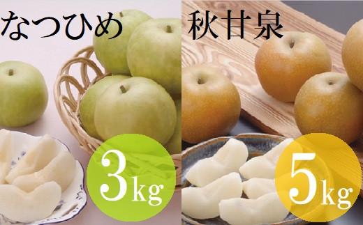 【21-026-001】【定期便】鳥取県産 梨食べ比べコースA(全2回)【高島屋選定品】