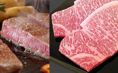 【事業者支援品】京都肉サーロインステーキ510g<銀閣寺大西>