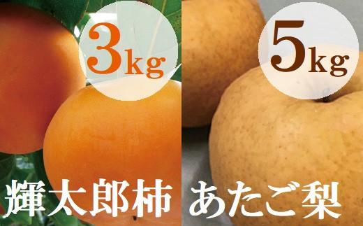 【21-028-003】【定期便】鳥取県産柿・梨食べ比べコースA(全2回)【高島屋選定品】