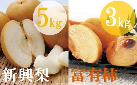 【21-030-006】【定期便】鳥取県産柿・梨食べ比べコースB(全2回)【高島屋選定品】