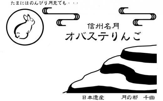 2021年10月上旬より順次発送】信州名月オバステりんご(贈答用秋映)約 ...