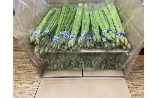 1039 【夏芽】グリーンアスパラガス サイズ混合約5kg