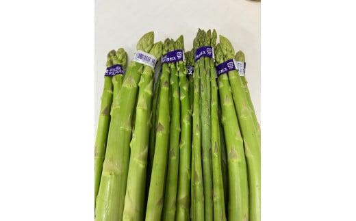 1038 【夏芽】グリーンアスパラガス サイズ混合約1kg